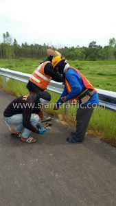 Highway guard rail w shaped beam Ban Waeng to Yak Showroom Buriram Highway