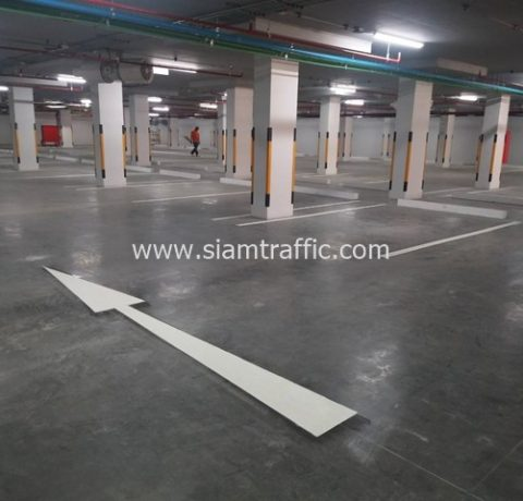 Parking areas road marking at Charoen Pokphand Engineering Phra Nakhon Si Ayutthaya
